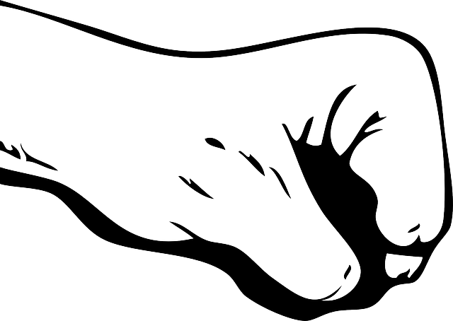 Fist Hand Gesture Free Vector Graphic On Pixabay