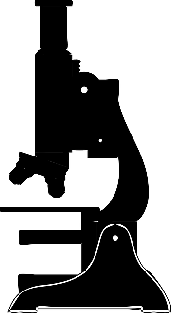 Clipart - Microscope (silhouette)