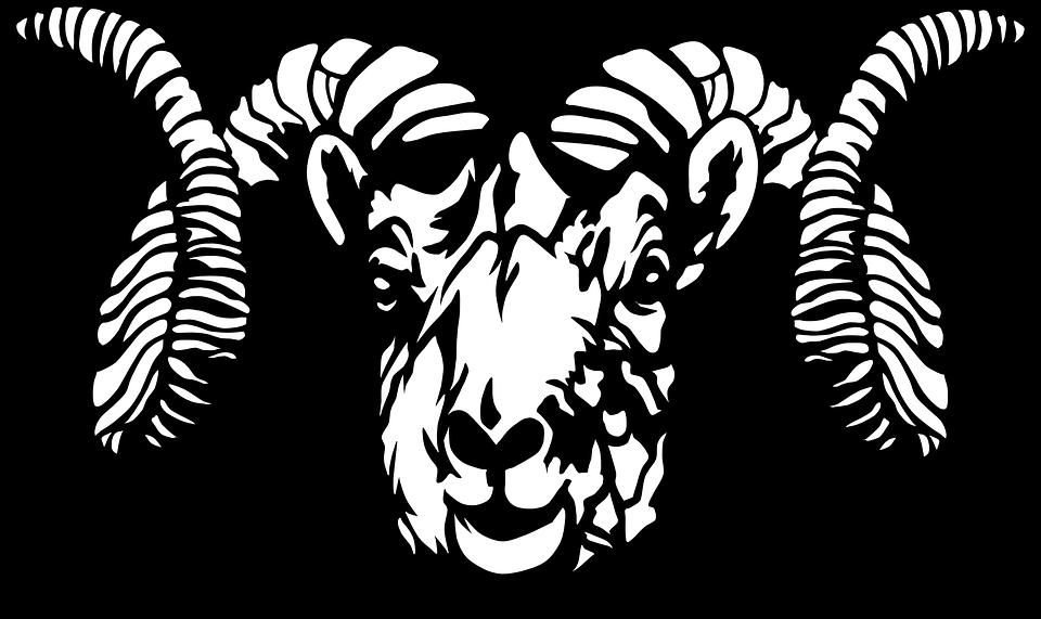 Free vector graphic: Sheep, Head, Skull, Face, Horns ...