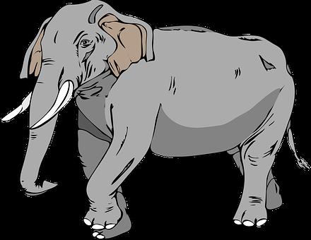 1 000 Free Herbivores Mammal Images Pixabay