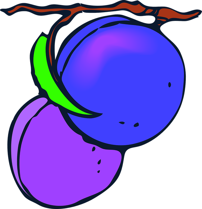 fruits plums purple free vector graphic on pixabay rh pixabay com Carpet Clock Faces White Clock