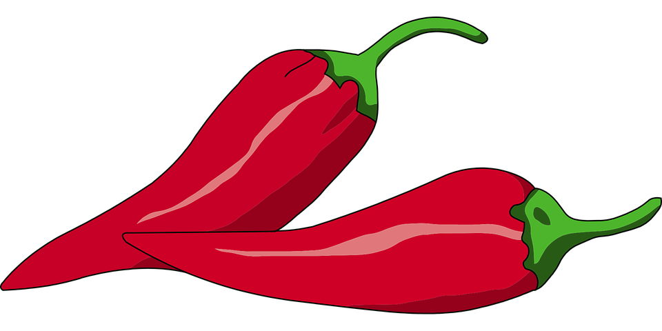 pepper chili red  u00b7 free vector graphic on pixabay jalapeno clip art hot jalapeno clip art black and white