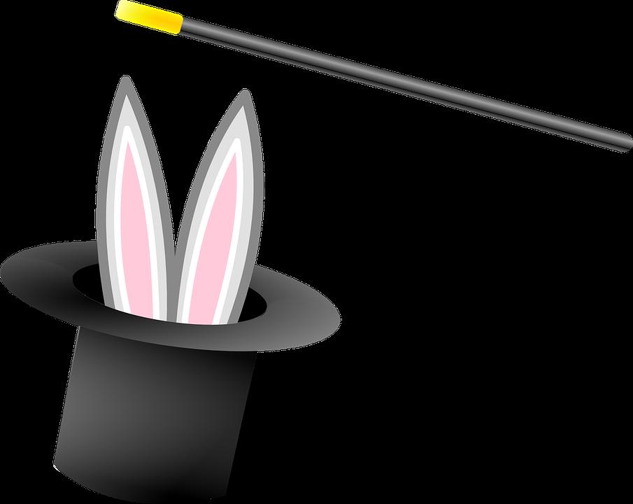 magic hat rabbit - photo #1
