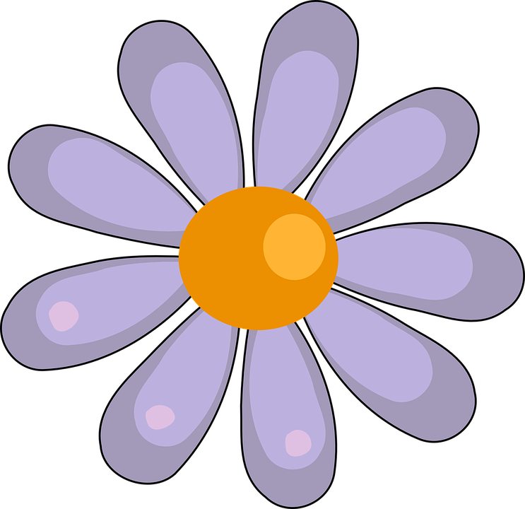 Free vector graphic: Daisy, Flower, White, Floral - Free Image on ...