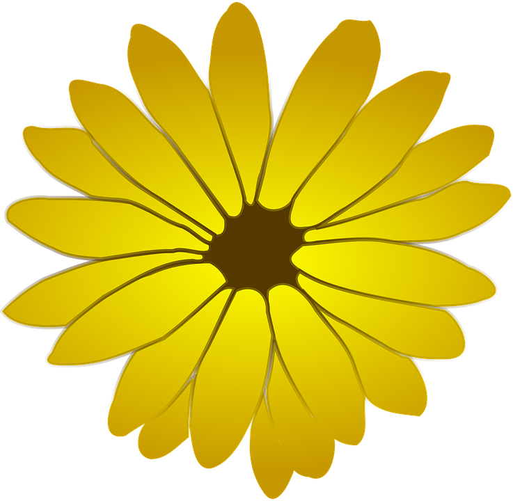 yellow flower vector png - photo #5