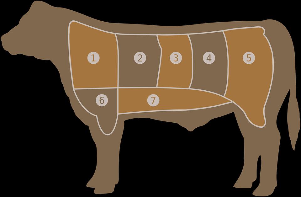 kød og ko