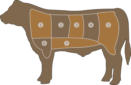 Cow Steak Diagram   Meat Vector Graphics Pixabay Download Free Images