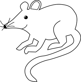 https://cdn.pixabay.com/photo/2012/04/12/10/40/mouse-29402__340.png