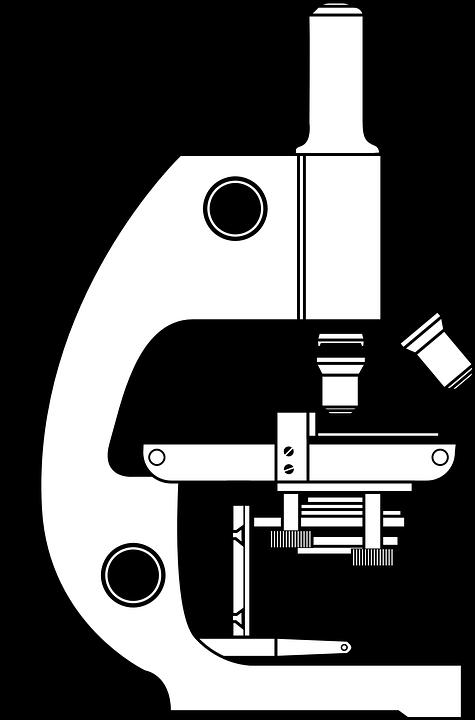 mikroskop wissenschaft mikroskopie  u00b7 kostenlose vektorgrafik auf pixabay