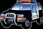police, car, black