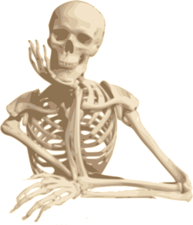 Skeleton Smiling Sitting Free Vector Graphic On Pixabay