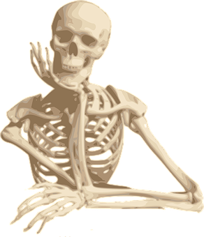 Skeleton Smiling Sitting Cartoon Isolated