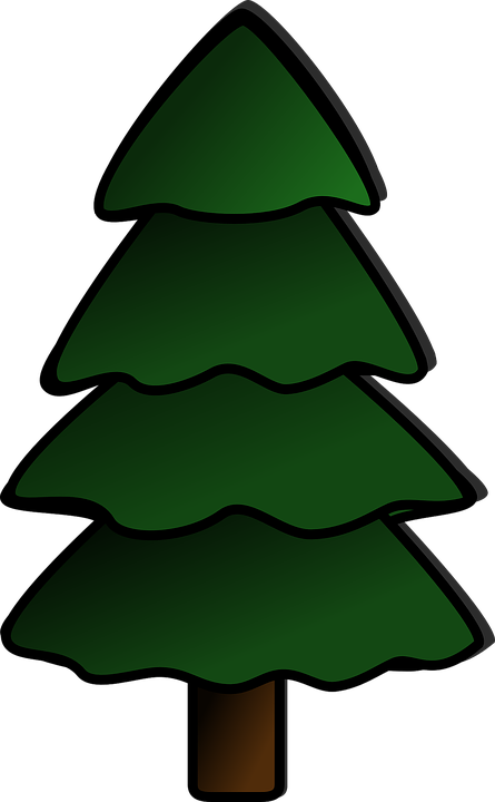 spruce pine tree free vector graphic on pixabay rh pixabay com pine tree branch graphic pine tree graphics free