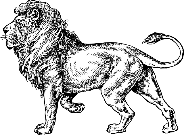 free vector graphic animal mane king free