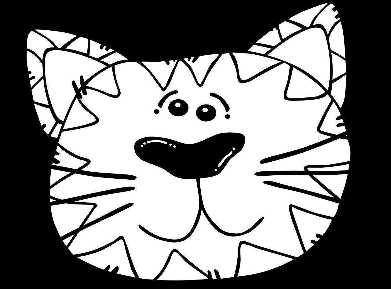 Открыток, рисунок смешной морды кота