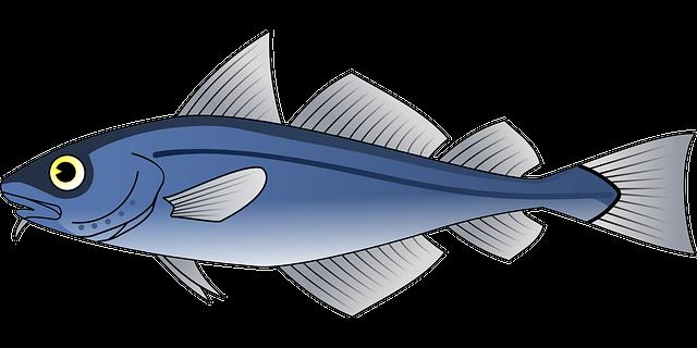 Free vector graphic: Fish, Tuna, Blue, Sea, Food - Free ...