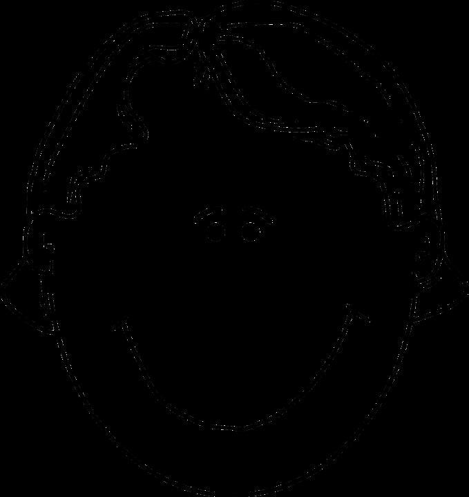 Kostenlose Vektorgrafik Junge Kopf Gesicht L 228 Cheln
