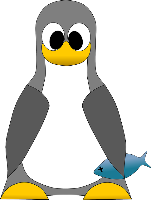 Free Vector Graphic Linux Penguin Tux Bird Free