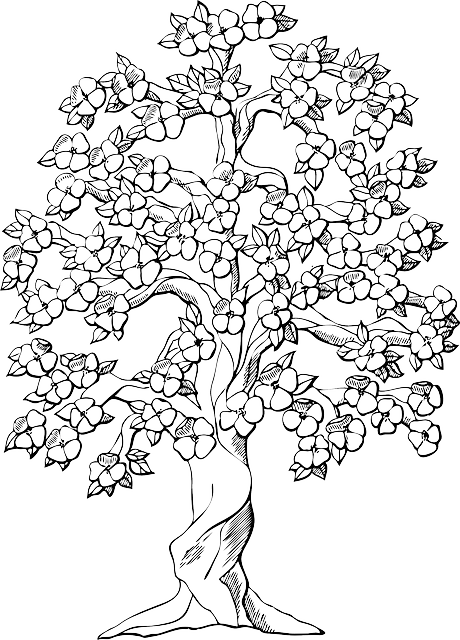 Flowering tree cherry blossoms free vector graphic on for Cherry blossom tree coloring page