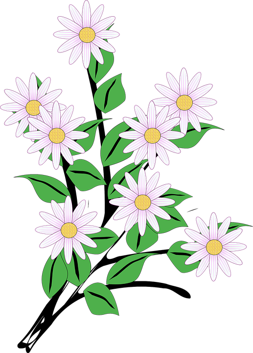 Flowers Bunch Spring Free Vector Graphic On Pixabay