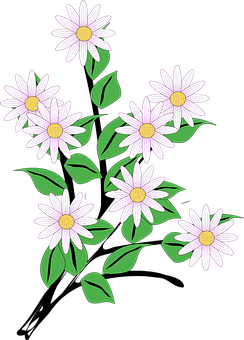 Flowers, Bunch, Spring, Blooms, White