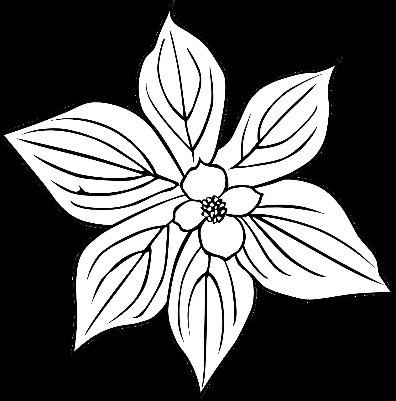 Daun Bunga Hitam Dan Putih Gambar Vektor Gratis Di Pixabay