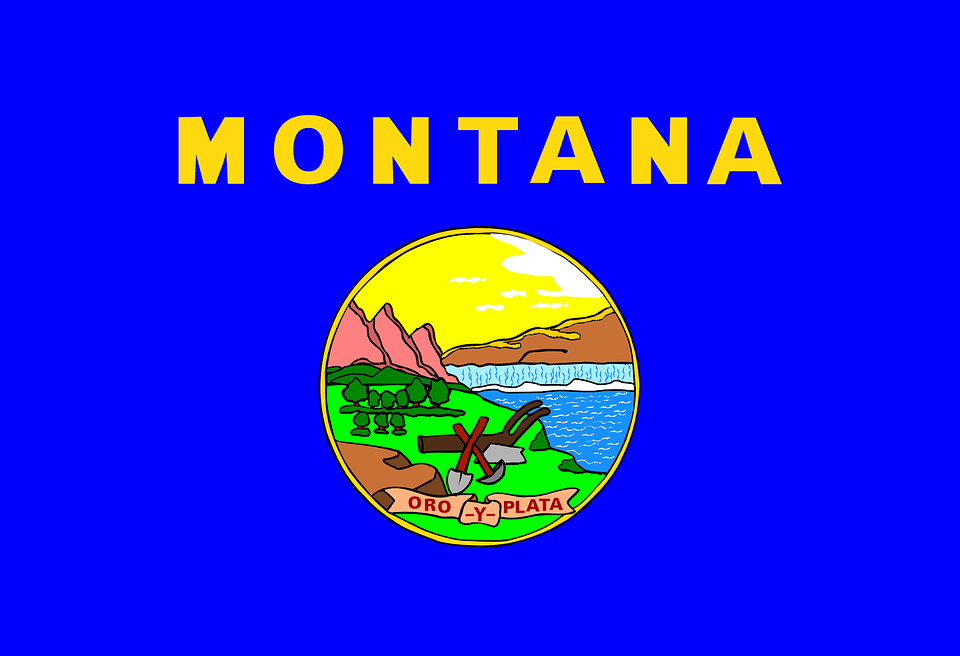 Montana State Flag Blue · Free vector graphic on Pixabay