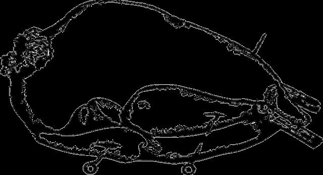 Chicken Turkey Roast \u00b7 Free vector graphic on Pixabay