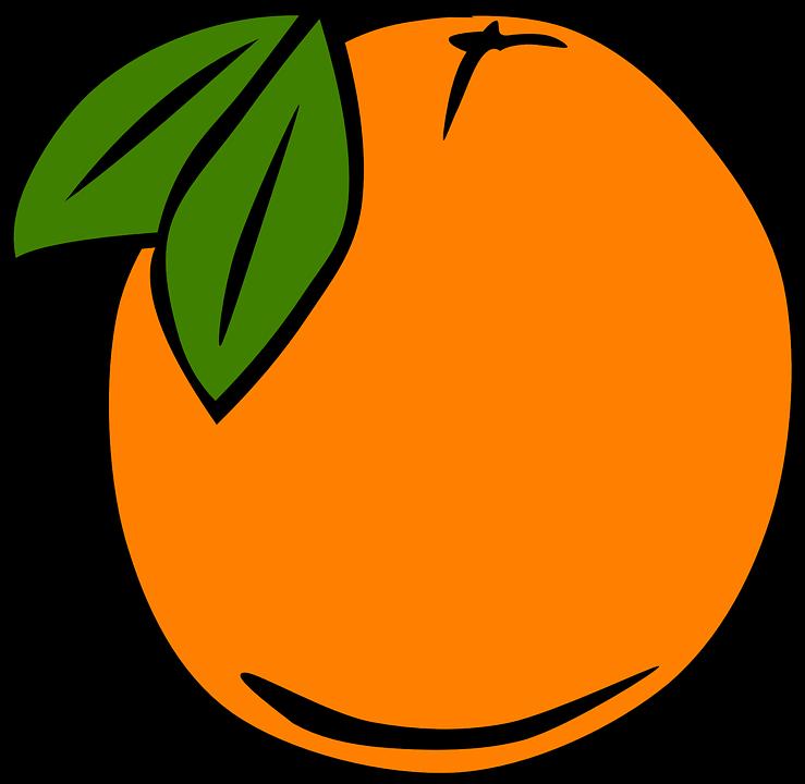 orange fruit ripe pixabay graphic leaves edible