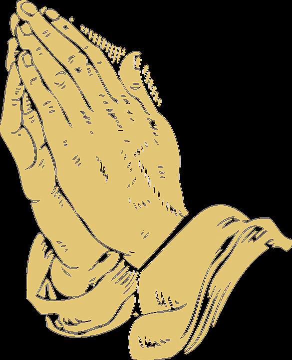 Folded, Hands, Praying, Pray, Prayer