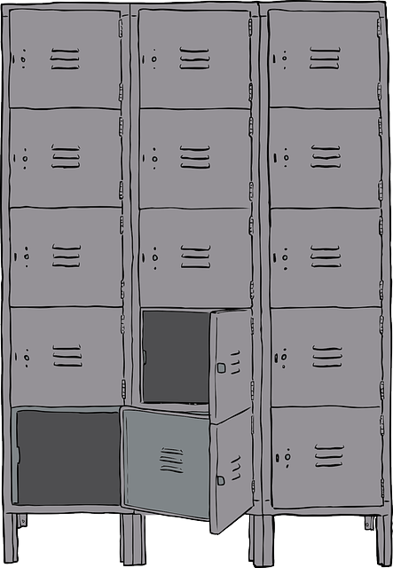 Lockers Metal Cabinet 183 Free Vector Graphic On Pixabay