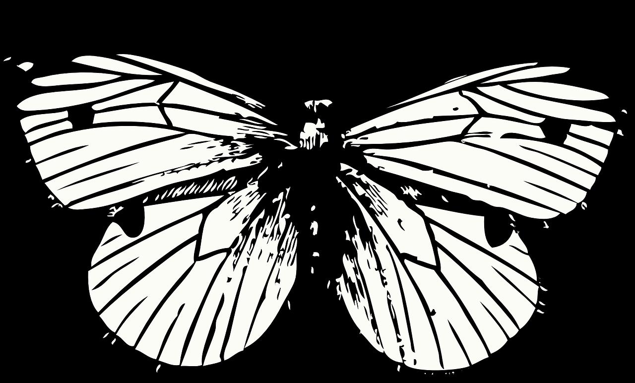 Черно-белые картинки милые аниматроники мне оформлять