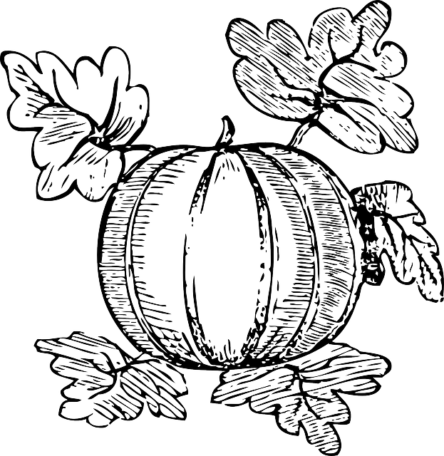 Line Drawing Zucchini : Free vector graphic melon fruit watermelon nutrition