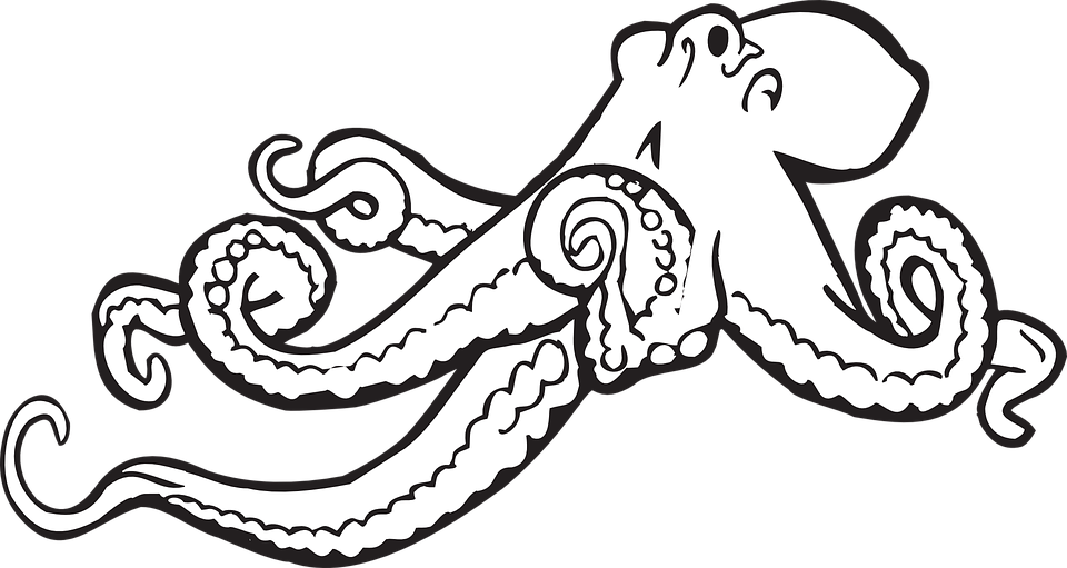 octopus sketch drawing free vector graphic on pixabay rh pixabay com Free Pig Clip Art Free Elephant Clip Art
