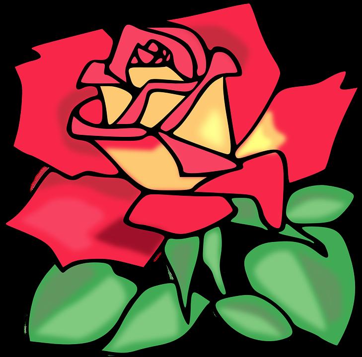 Rose Warna Merah Muda Bunga Gambar Vektor Gratis Di Pixabay
