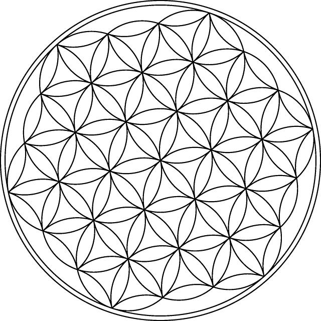 Flower Design Floral Free Vector Graphic On Pixabay