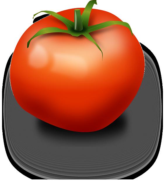 Tomate Frutas Rojo · Gráficos vectoriales gratis en Pixabay  Vector