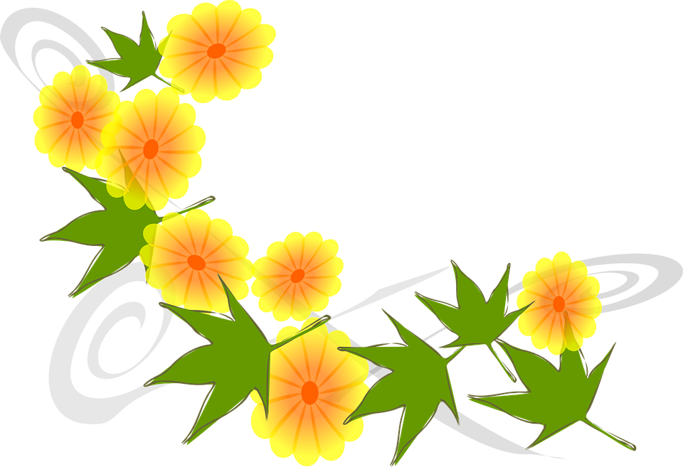 yellow flower vector png - photo #9