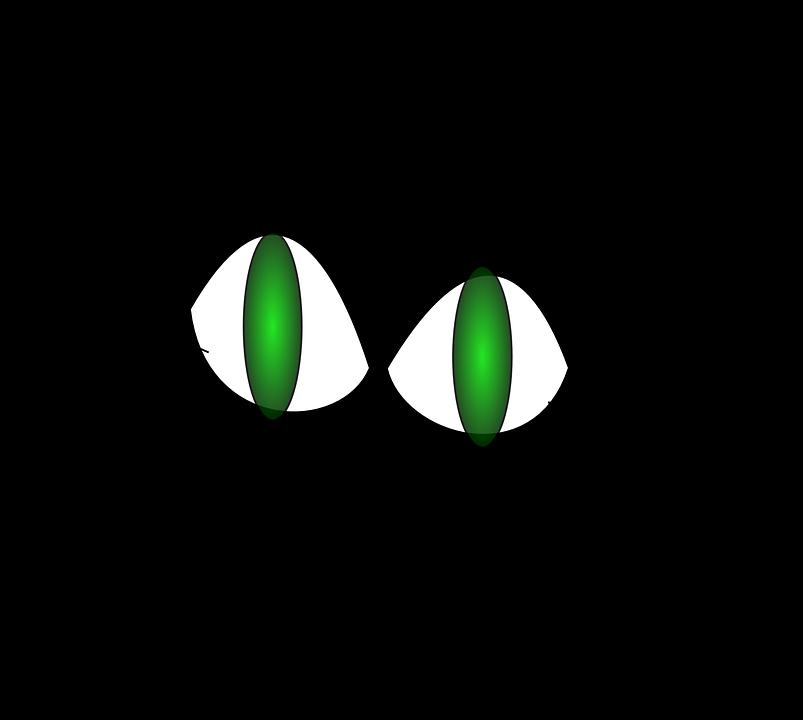 čierna diera mačička