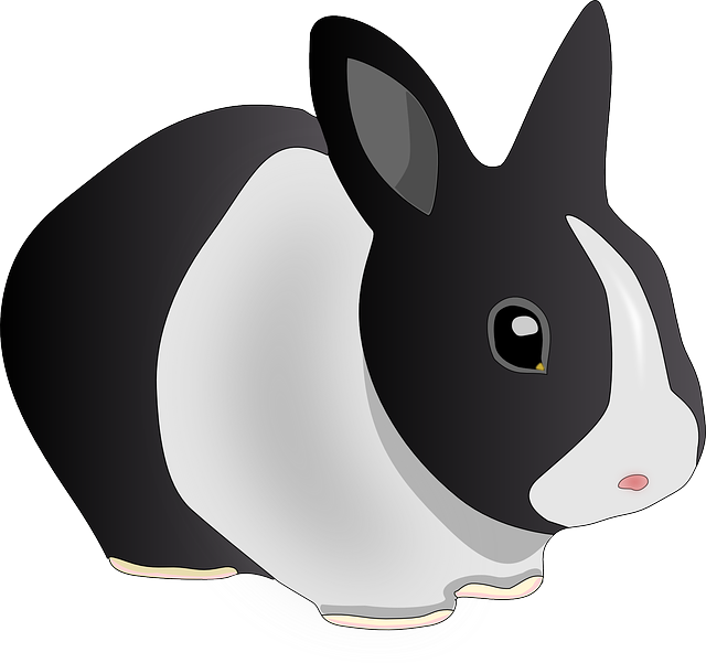 Gambar vektor  gratis Kelinci  Hewan Hitam Dan Putih