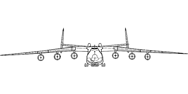 Plane Jet Front Free vector graphic