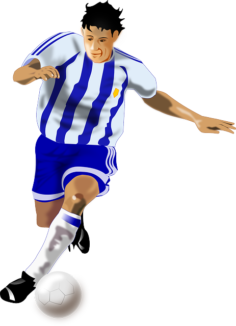 Soccer Football Sports · Free vector graphic on Pixabay