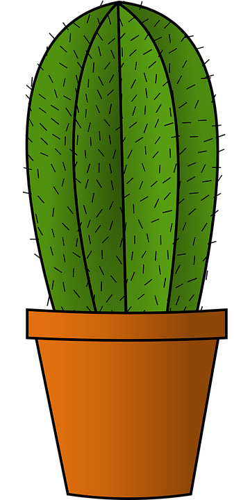 kostenlose vektorgrafik kaktus gr n pflanze blumentopf. Black Bedroom Furniture Sets. Home Design Ideas