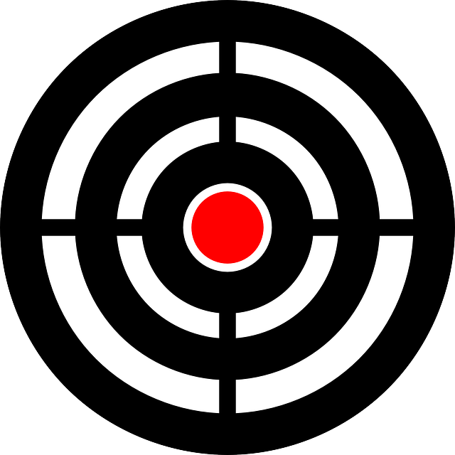 target bullseye aim  u00b7 free vector graphic on pixabay