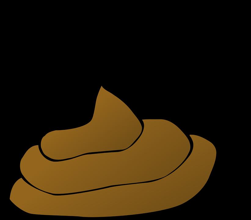 Hütte Kot Stinkende Kostenlose Vektorgrafik Auf Pixabay
