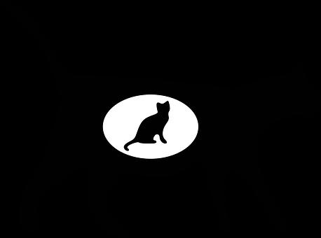 Mačička lízanie čierna