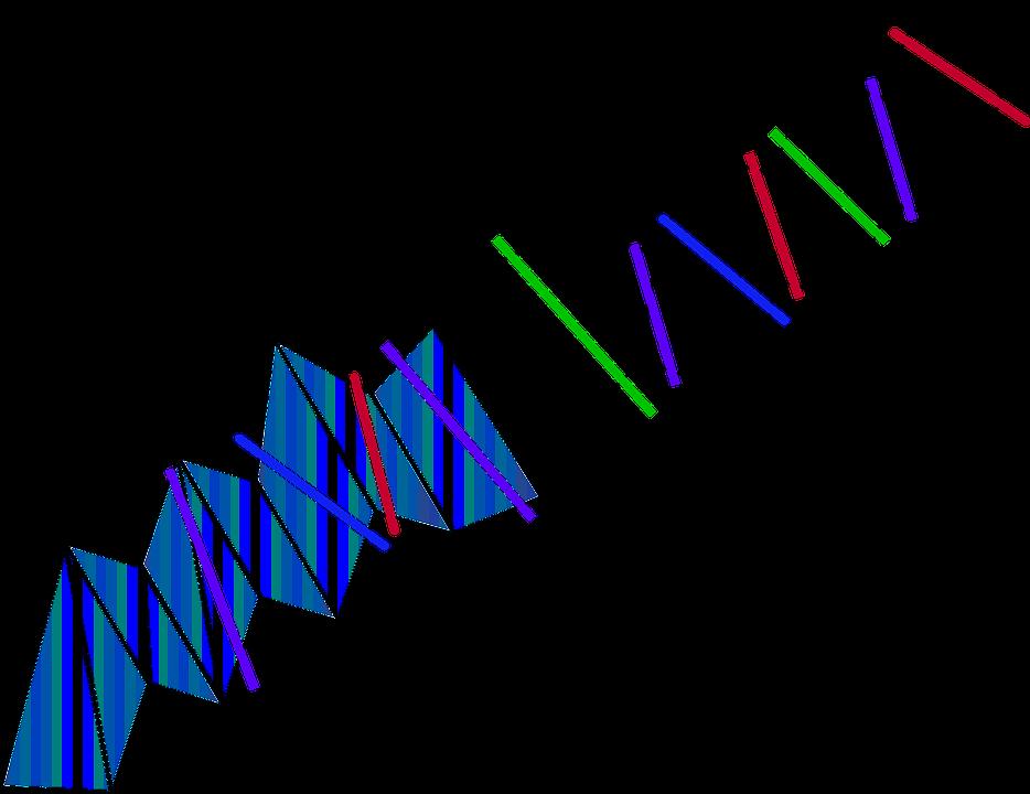 a4f3ae1ee115 Červená Čierna Zelená - Vektorová grafika zdarma na Pixabay