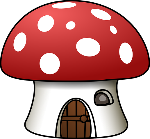 Which mushrooms should be eaten in pregnancy and which mushrooms should not be eaten, which can also be poisonous