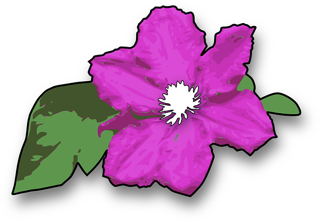 Flower Purple Violet Free Vector Graphic On Pixabay
