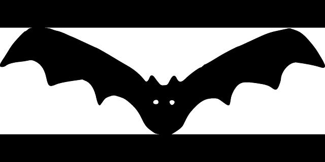 bat vampire cartoon  u00b7 free vector graphic on pixabay